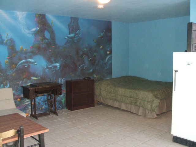 The dolphin room