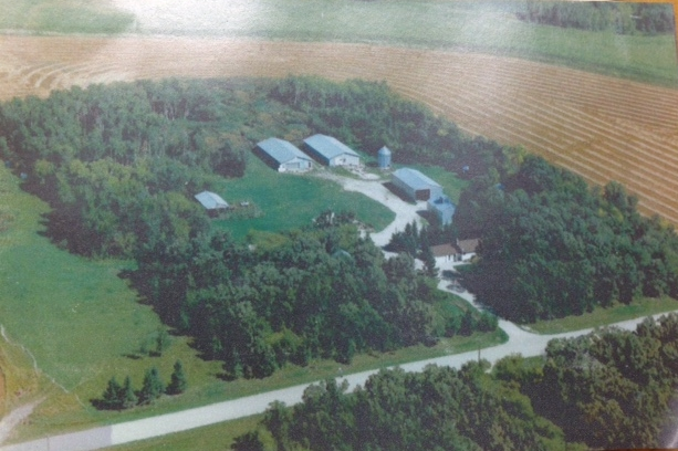aerial 1999